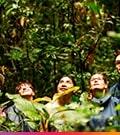 Tour Machu Picchu y Selva Peruana